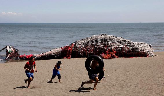 ballena rellena de basura en filipinas 2