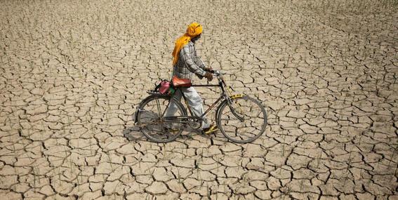 agricultores se suicidan por calentamiento global 1