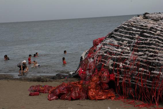 ballena rellena de basura en filipinas 3
