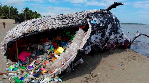 ballena rellena de basura en filipinas 1