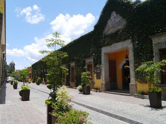 tequila pueblo magico 1