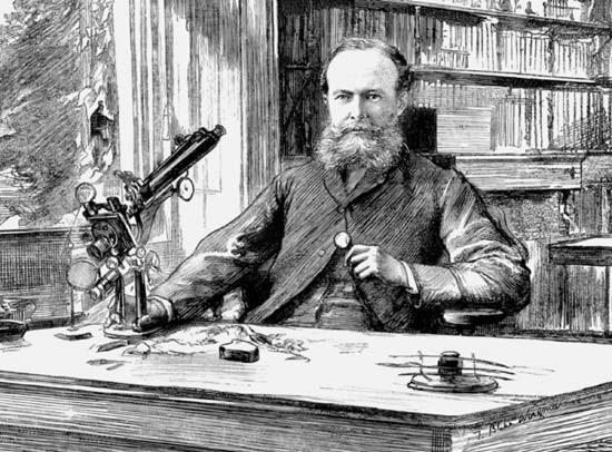 Ideas absurdas que se creían ciertas en la Época Victoriana 4