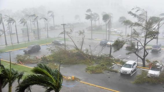 crucero de royal caribbean cancela viaje para rescatar a miles en puerto rico 1