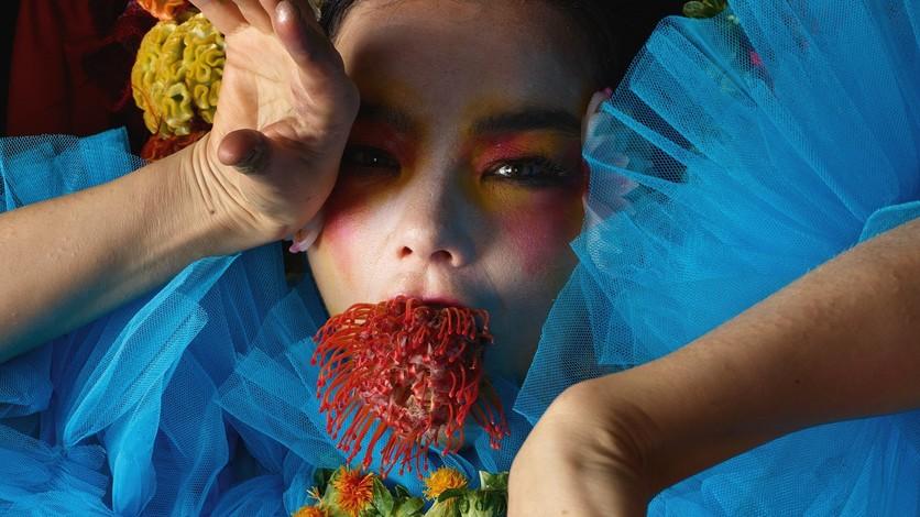 ¿Por qué el nuevo disco de Björk es como usar Tinder? 4