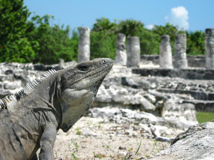 6 lugares turísticos en Cancún que puedes visitar sin gastar todos tus ahorros 4