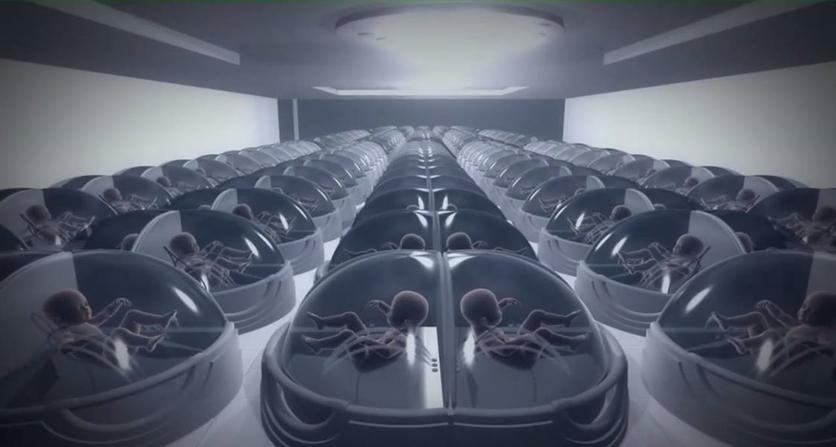 El sucio negocio de alquilar tu vientre para ser millonaria 6