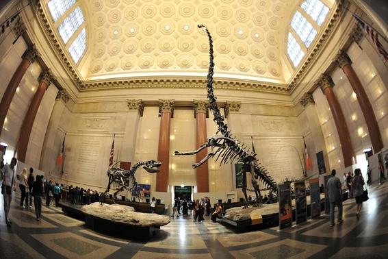 museos 9