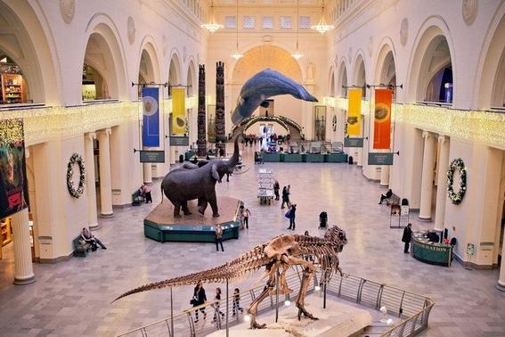 museos en estados unidos 8