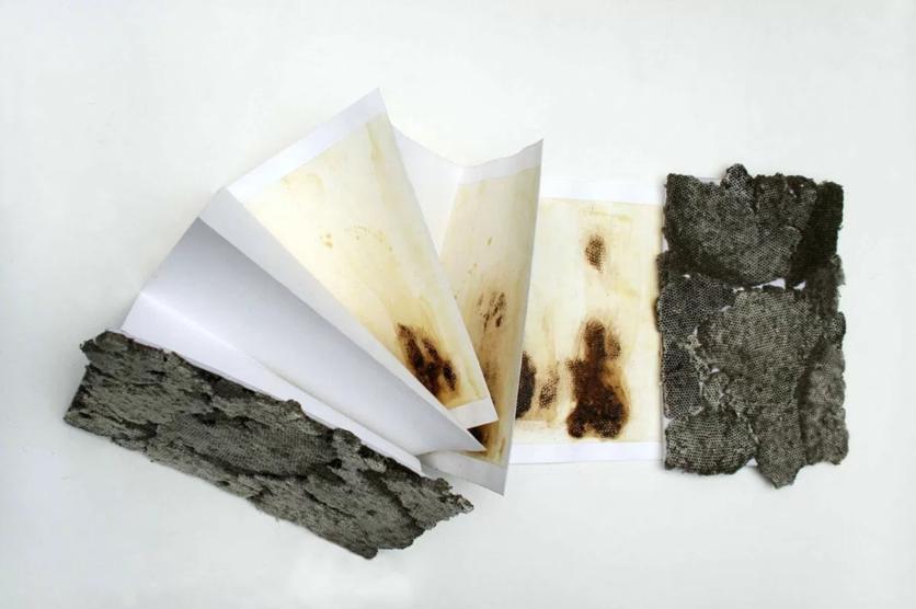 Las pinturas de fuego de Sabino Guisu que demuestran que los mexicanos sabemos renacer de las cenizas 11