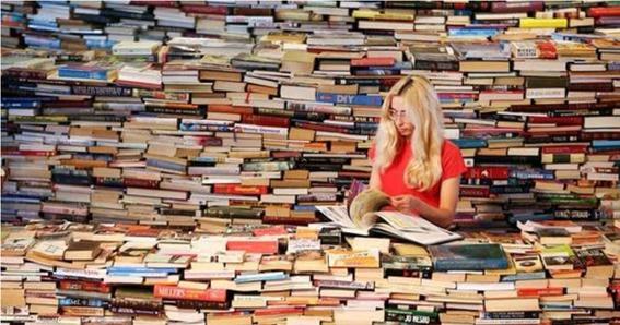 que es la institucion literaria 3
