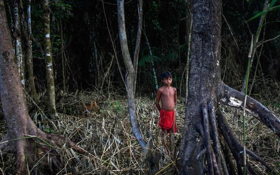 tribu amazonica 5