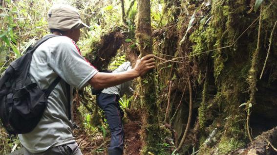 descubren ciudad inca en la amazonia peruana 1