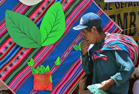 campesinos de coca son asesinados en colombia 1