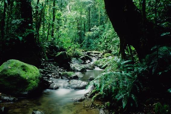natural wonders of latin america 18