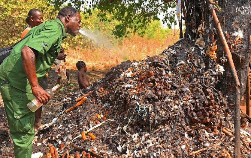 24 fotografías de sacrificios y vudú en África 0