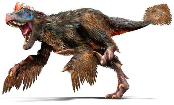 huellas gigantes de dinosaurio en argentina 2