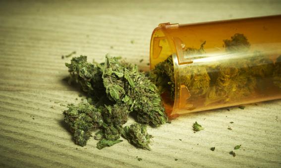 crean parches de marihuana que disminuyen dolores de la fibromialgia 2