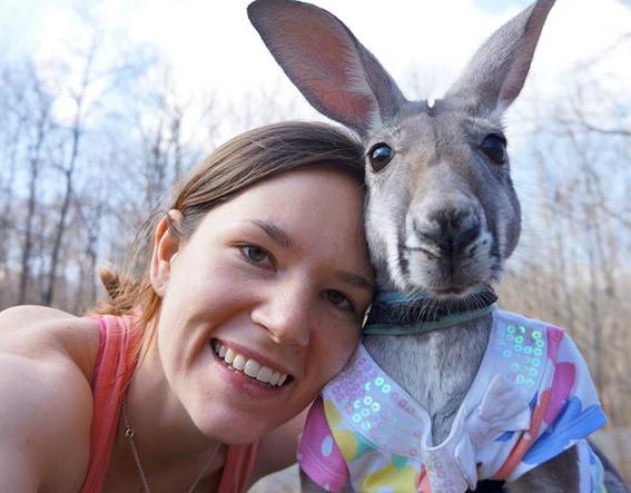 selfies con animales cada vez mas crueles 2