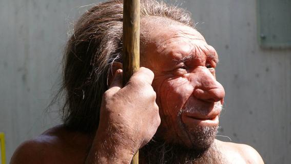 neandertales condenados a la extincion 1