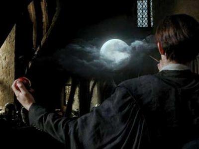 Libros que todos los fanáticos de Harry Potter deben leer 9