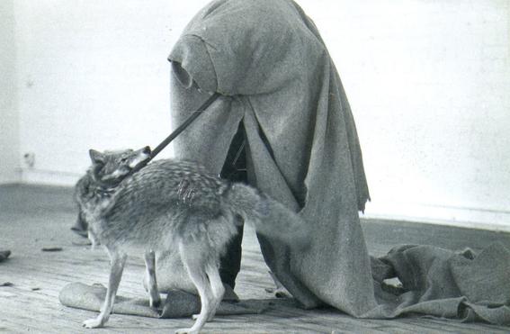 performance coyote joseph beuys 2