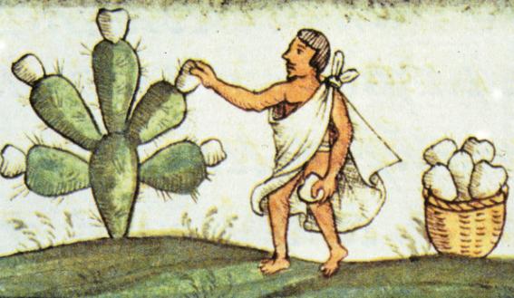 consejos de ninos aztecas de sus padres 1