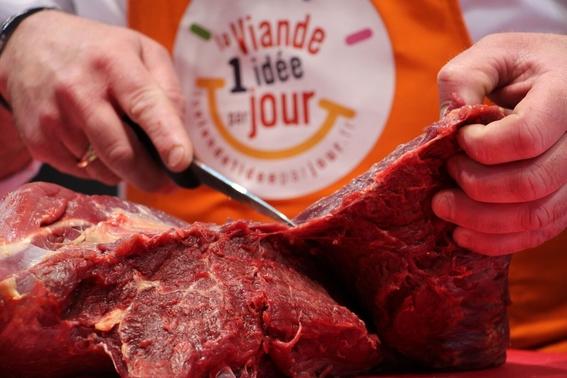 carne de caballo no apta para consumo humano 3