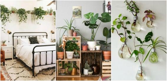 eco friendly apartment ideas 4