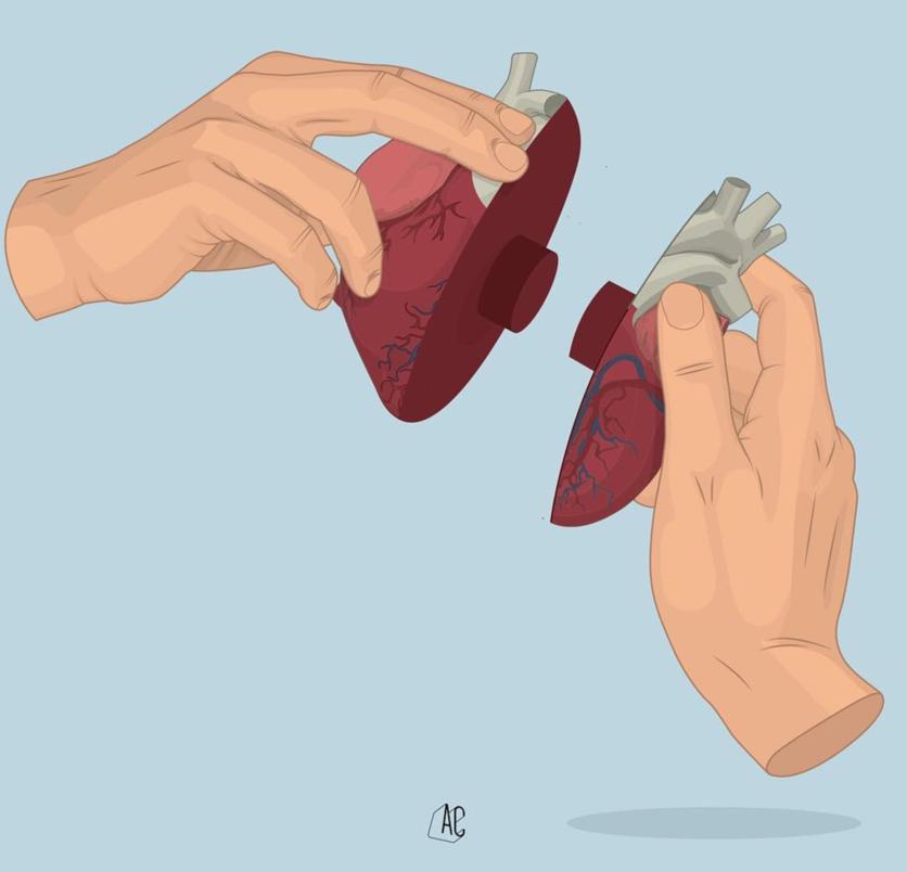 Ilustraciones de Álvaro Castro sobre corazones rotos 14