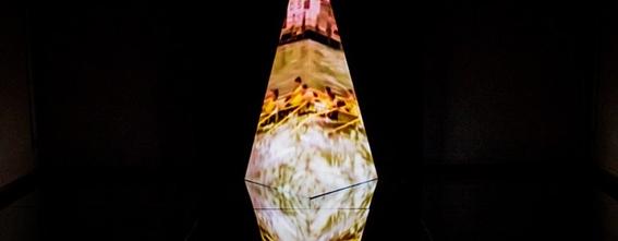festival de las luces filux mexico 7