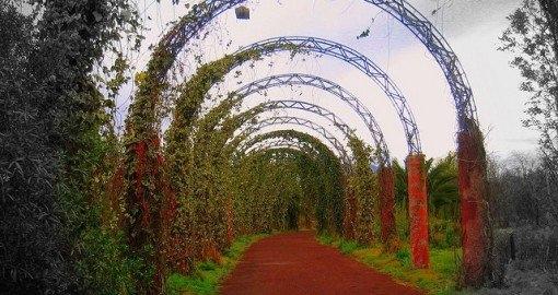 Cosas que no sabías del Parque Ecológico Xochimilco 1