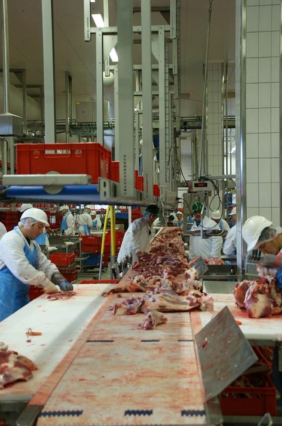 comer carne sera insostenible 2