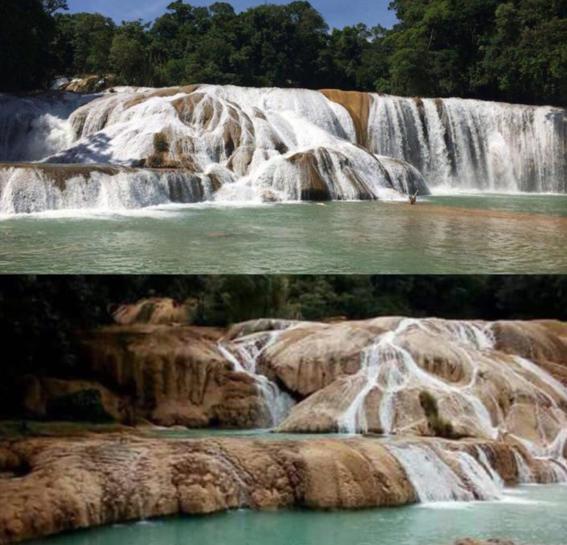 chiapanecos devuelven agua a las cascadas de agua azul 1