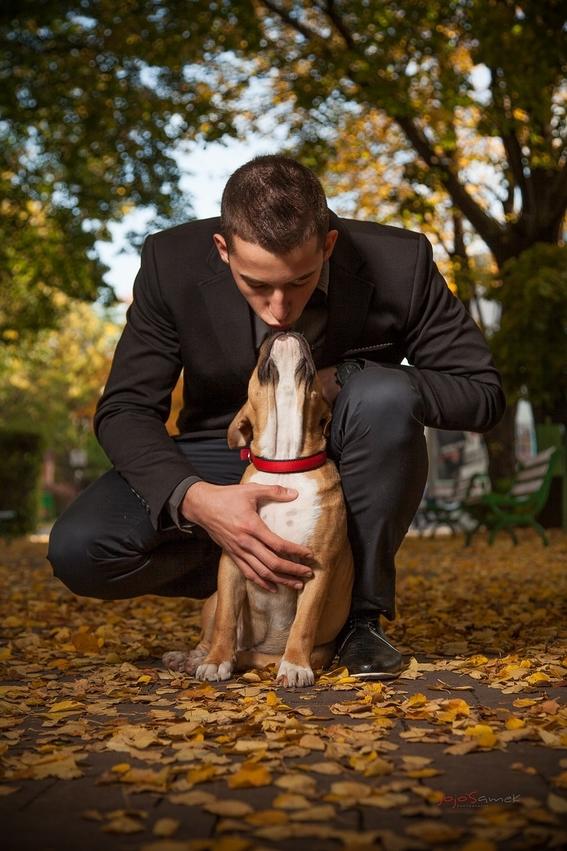 perros mejoran la salud de pacientes con vih 2