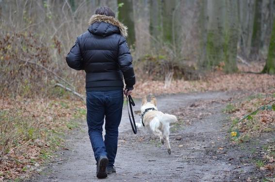 perros mejoran la salud de pacientes con vih 1