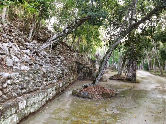 guia para visitar calakmul 6
