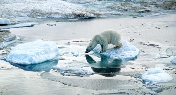 formas en que el cambio climatico acabara con la tierra 2