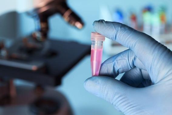 test genetico para saber futuros padecimientos 2