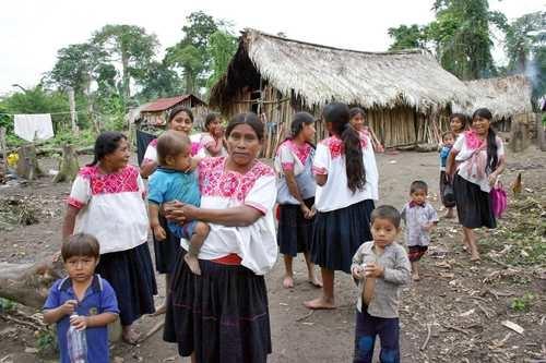 esterilizacion forzada de indigenas 4
