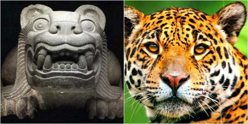 El misterioso significado del jaguar y otros animales en el México prehispánico 0
