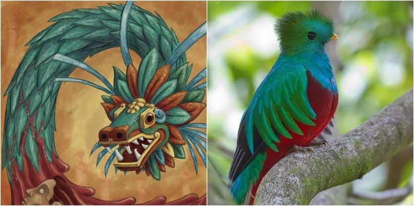 El misterioso significado del jaguar y otros animales en el México prehispánico 4