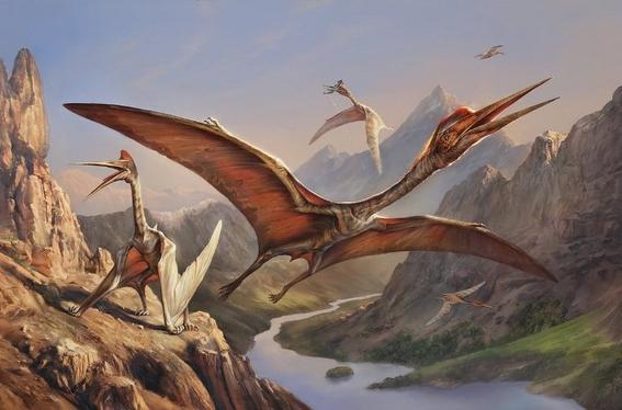 descubren huevos fosilizados de pterosaurio 1