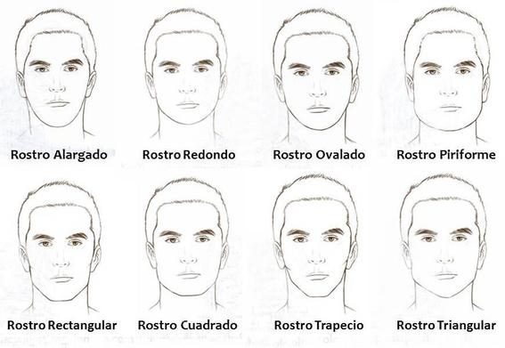 vida sexual asociada al tipo de rostro 3