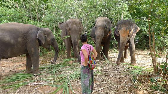 como viajar a tailandia 1
