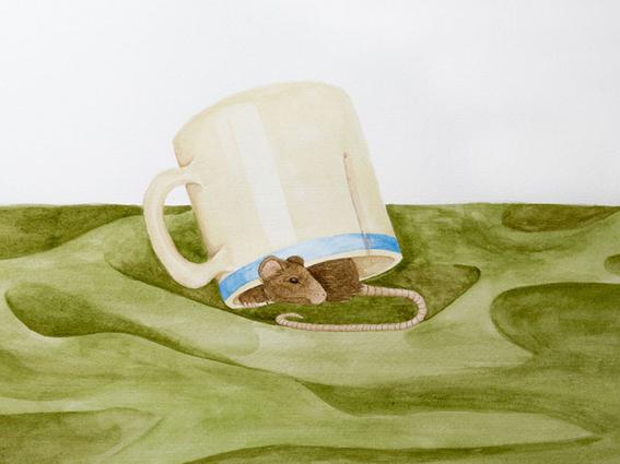 ilustraciones de sharon barcs 15