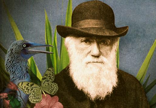 frases de charles darwin 1