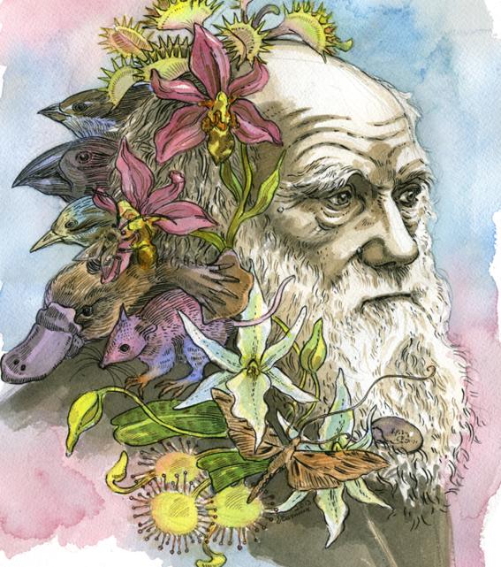 frases de charles darwin 3