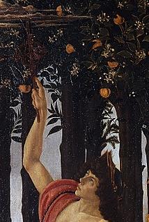 la primavera de botticelli 8