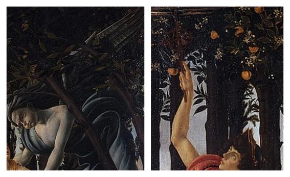 la primavera de botticelli 9