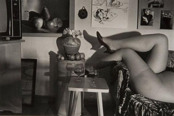 poemas eroticos de cecilia vicuna 5